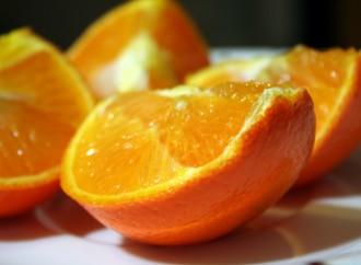 Recetas sin batidora: budín de mandarina