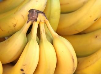 Recetas sin batidora: torta de banana