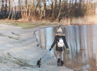 ¿Es conveniente para el niño tener una mascota?